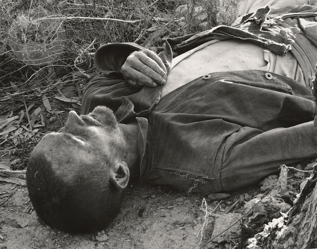 """Dead Man in the Colorado Desert"" by Edward Weston (1937)"