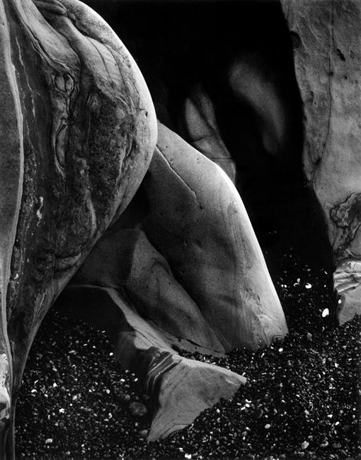 57R-Point Lobos by Edward Weston