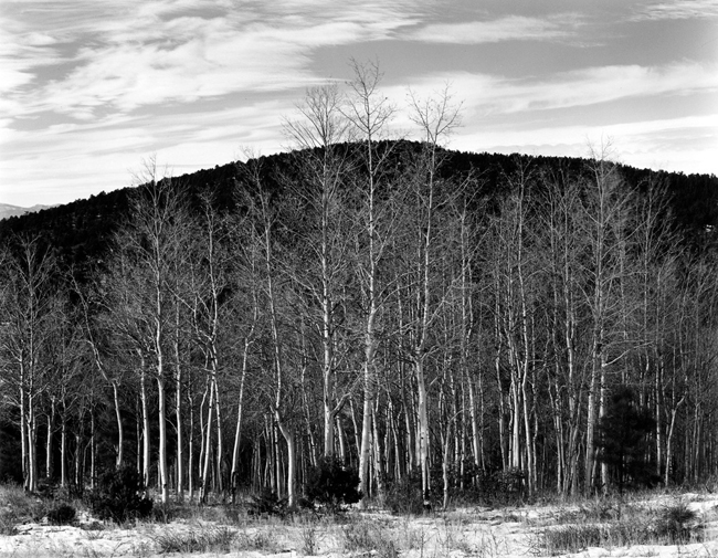 NM-AV-2G Aspen Valley, 1927 - Photograph by Edward Weston