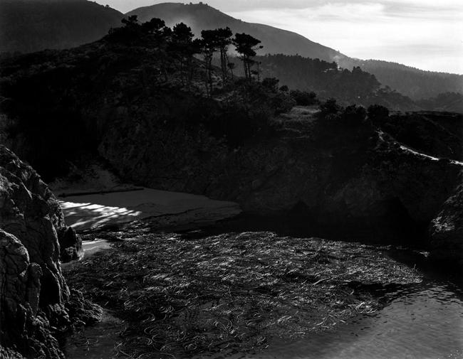 """PL-L-23G China Cove 2"" by Edward Weston"