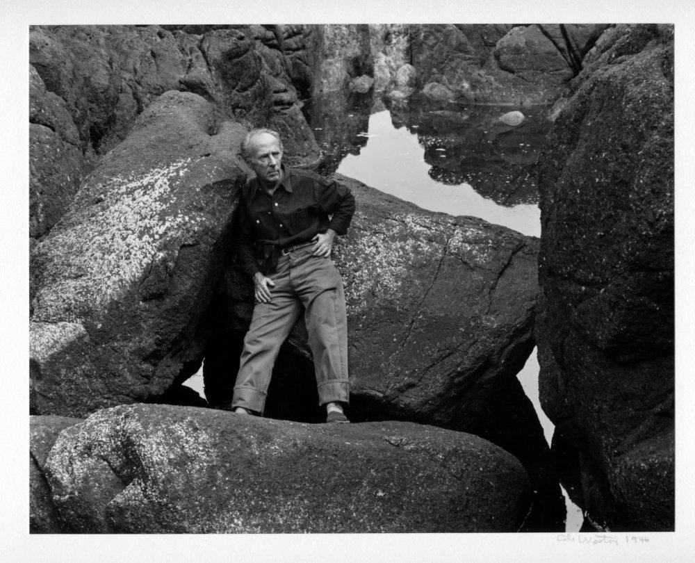Edward Weston at Point Lobos by Cole Weston