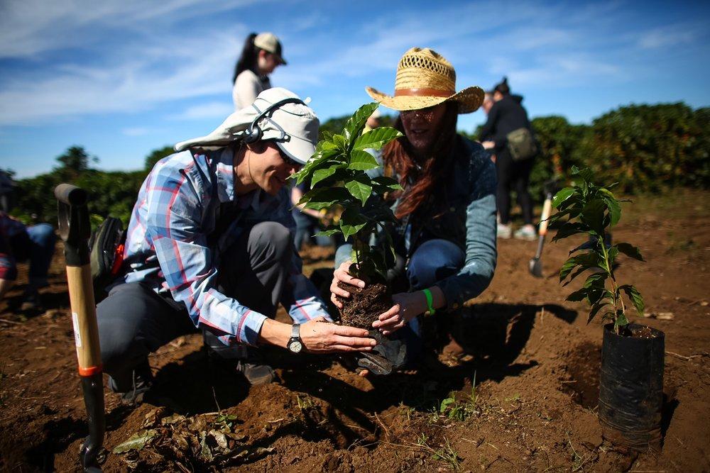 Costa Rica Alsacia 4.jpg
