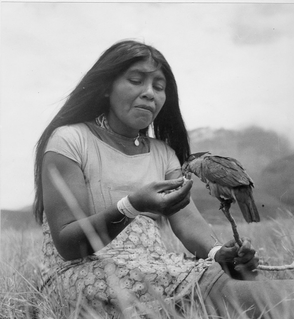 woman with bird.jpg