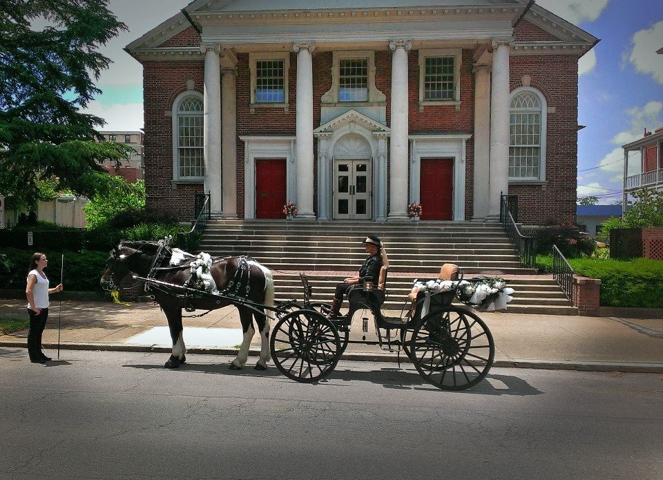 Arrivals in Elegance   Horse Drawn Carriages   http://arrivalsinelegance.com/