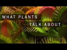 What plants talk about1.jpg