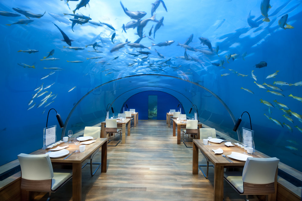 Conrad Maldives_Ithaa Undersea Restaurant (1).jpg