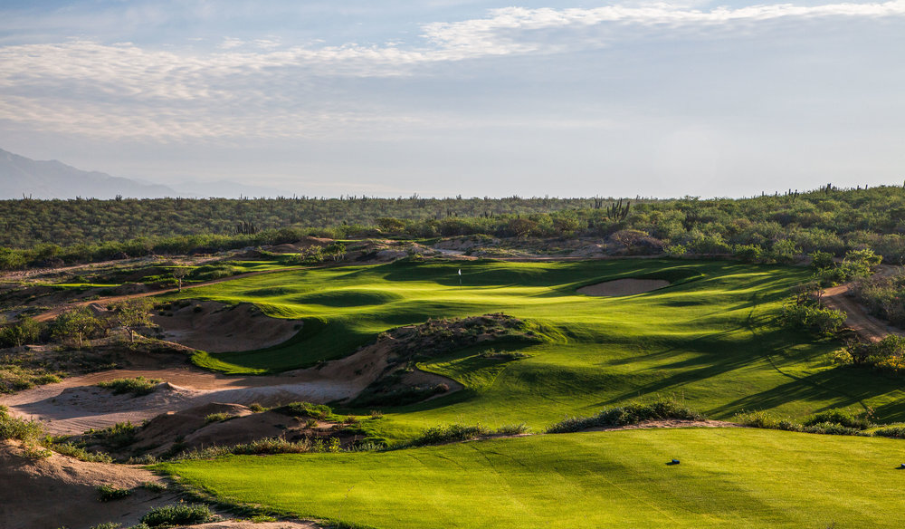 9tee-morning-quivira.JPG