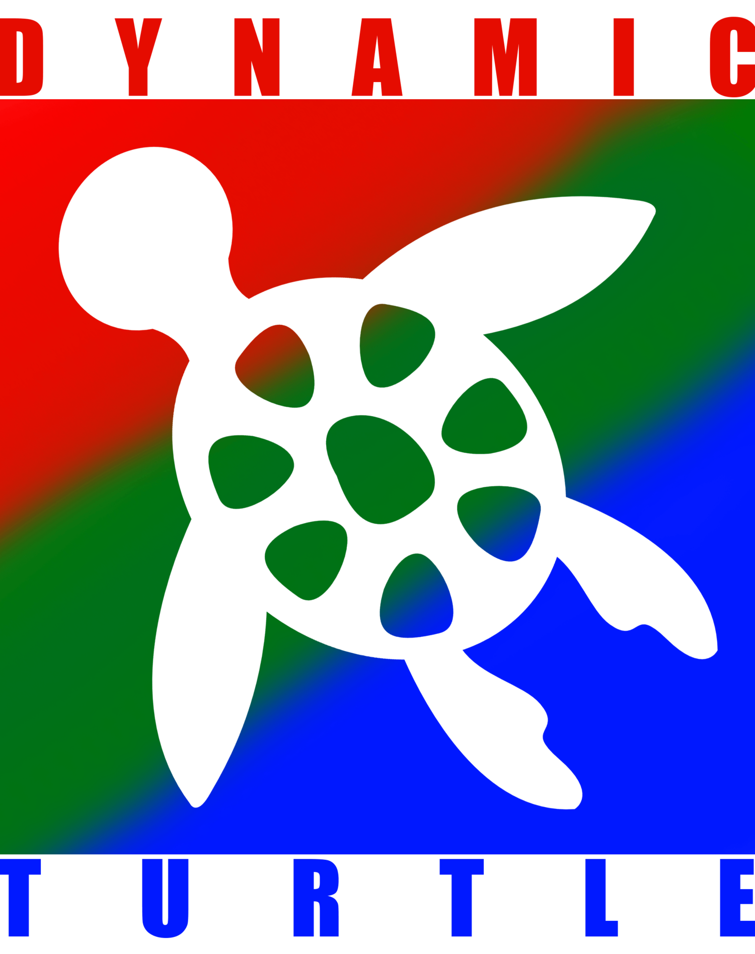Dynamic Turtle LLC