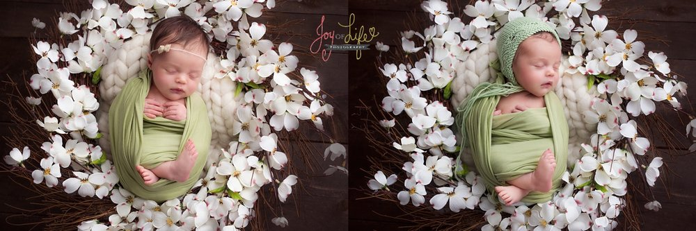 JoyofLifePhotography_0299.jpg