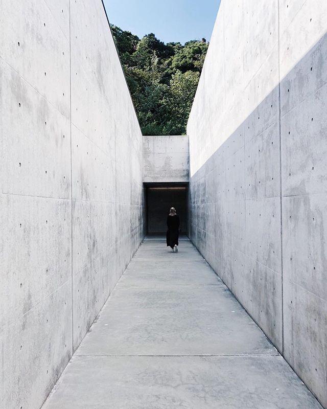 Tadao.