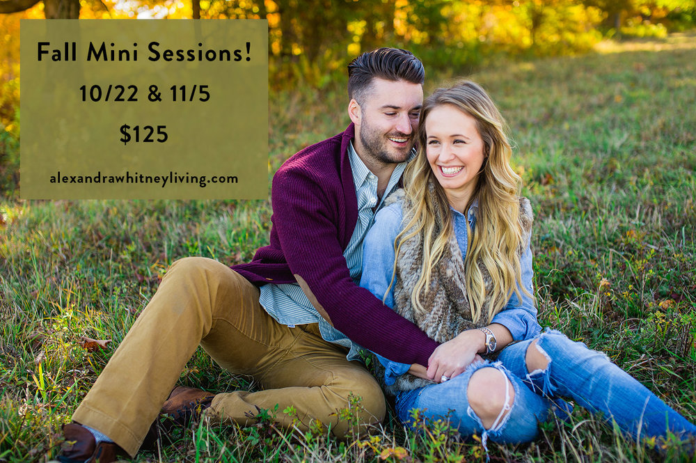 Fall Mini Sessions || Alexandra Whitney Living Portrait photographer for Philadelphia, Lehigh Valley and Bucks County