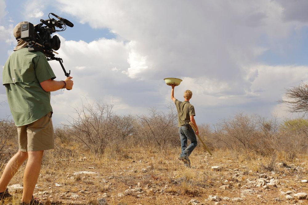 Hunting for Cheetahs