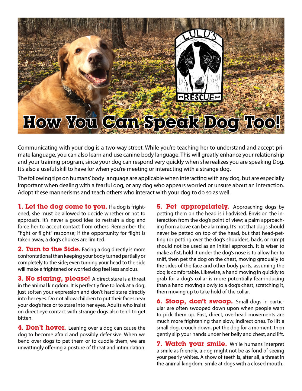 how you can speak dog too