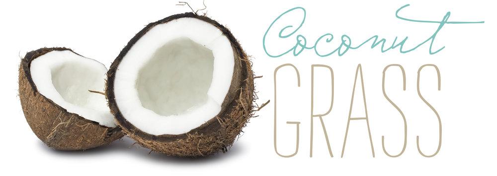 Coconut-Grass-logo.jpg
