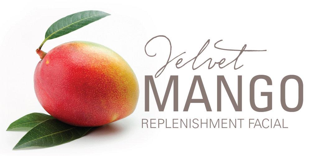 Velvet-Mango-logo.jpg
