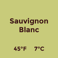 profile_Sauvignon Blanc.jpg