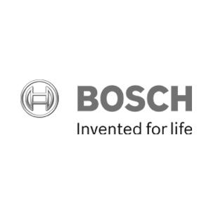 Bosche+B.jpg