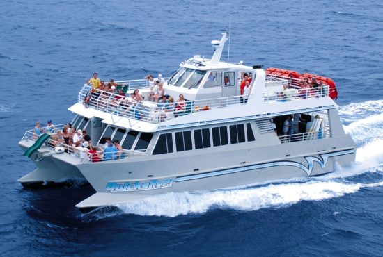 Quicksilver-Boat-Lanai.jpg