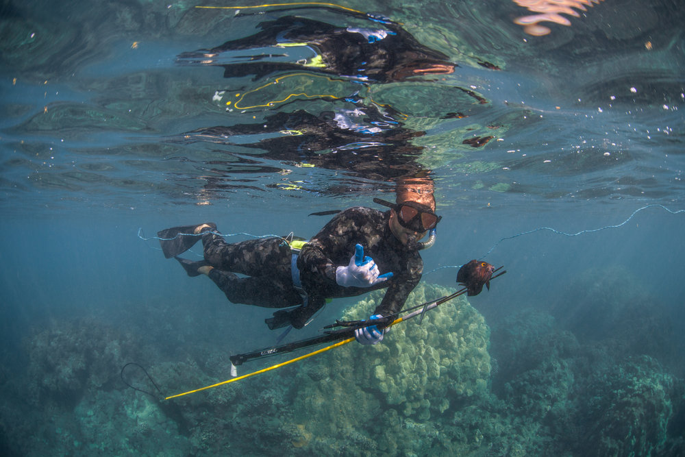 Maui-Spearfishing-Ocean.jpeg