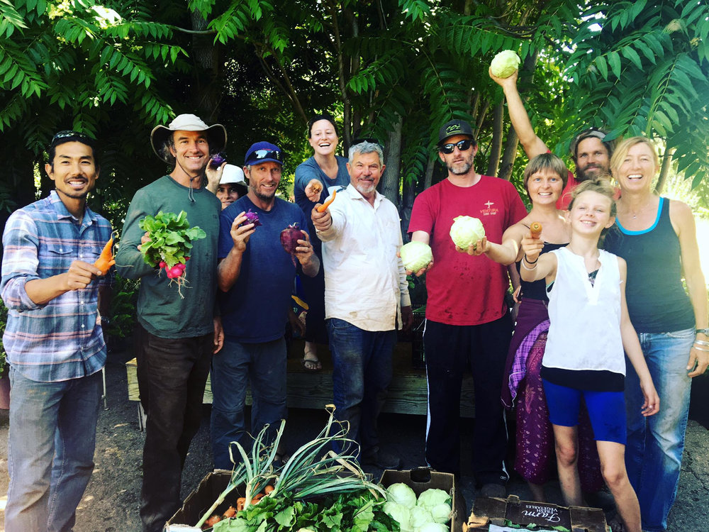 CSA volunteer crew for Farmer & the Cook Organic Market/Del Pueblo Farm, Ojai, CA