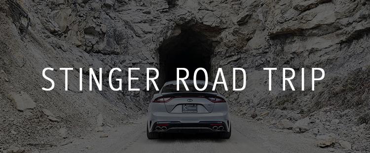 stinger-roadtrip.jpg