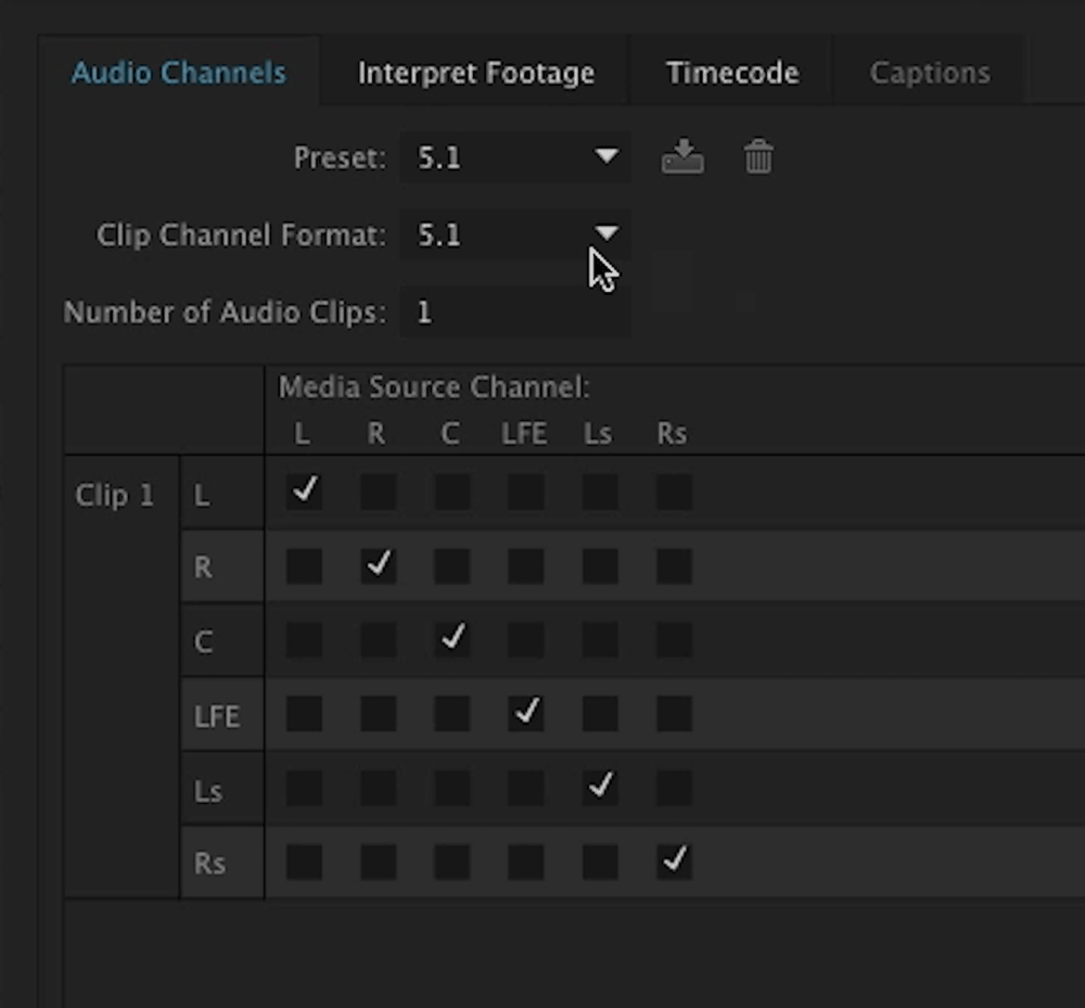 By default, Premiere displays 5.1 audio as only one clip