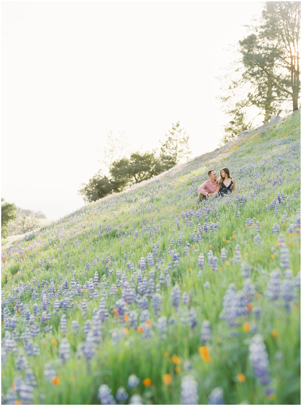 Santa_Ynez_Superbloom_Engagement_Session-11.jpg