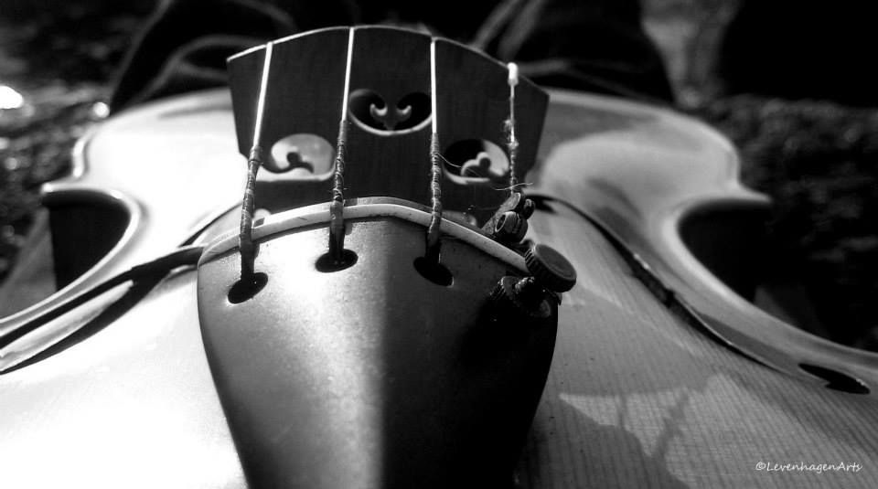 BW+Violin (1).jpg