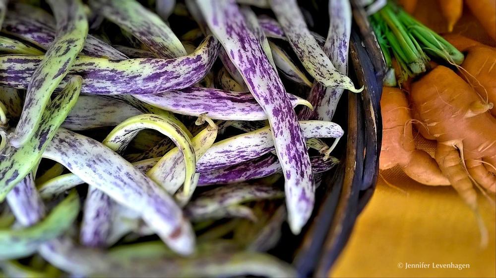 Dragon Beans & Carrots - Woodstock Farm Market - Portland Oregon.png
