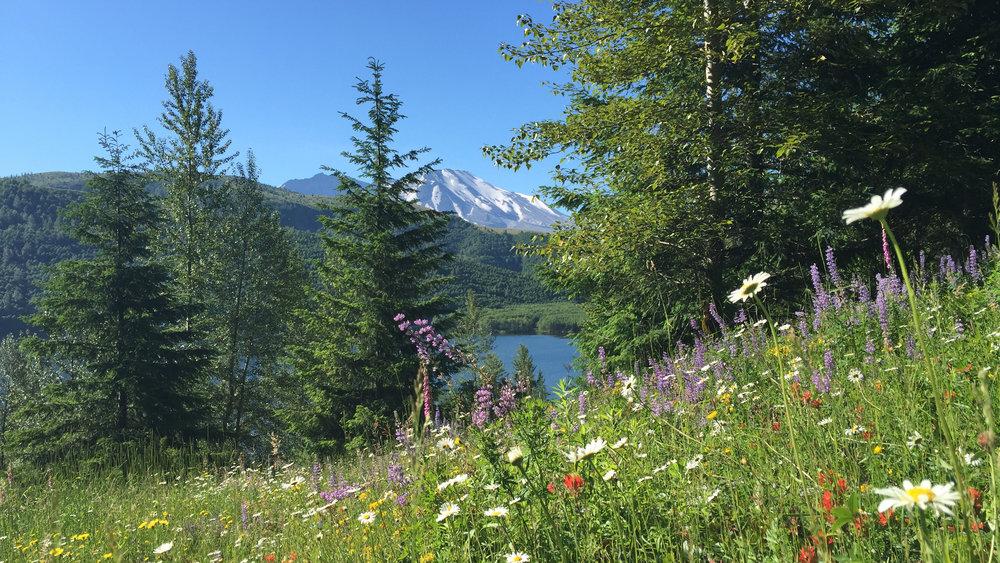 Elk Bench Trail.JPG