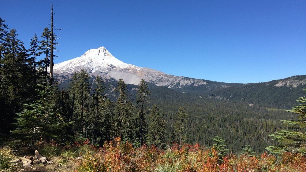 Wy'east howl - VALLEY to VOLCANO:50K from the Hood River Valley to Mt. Hood Meadows!October 6, 2018