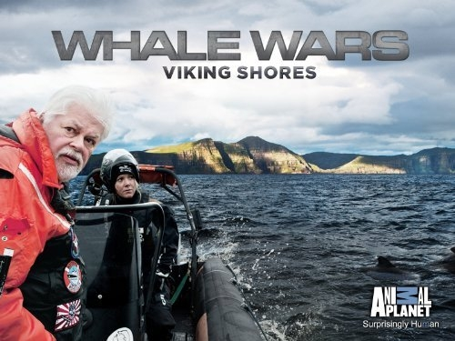 sea-shepherd-viking-shores 2.jpg