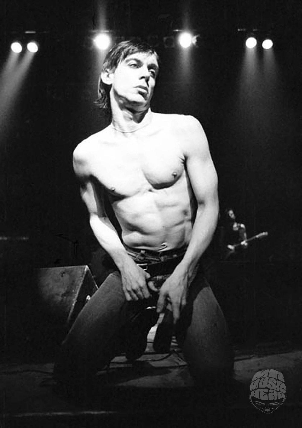 ian dickson_Iggy Pop_1977.jpg