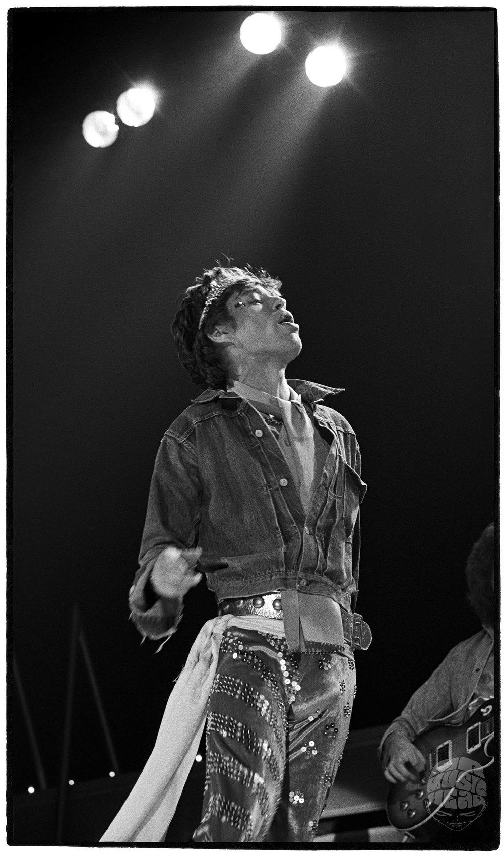 al satterwhite_rolling stones_Mick Jagger-2.jpg