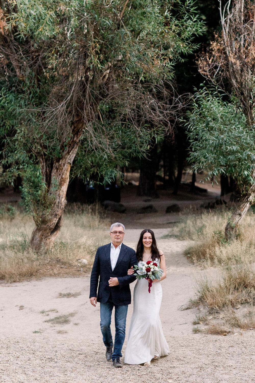 Intimate Yosemite Wedding_Buena Lane Photography_091318ER243.jpg