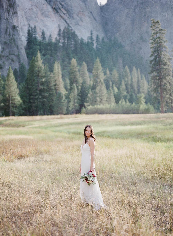 Intimate Yosemite Wedding_Buena Lane Photography_000063870013.jpg