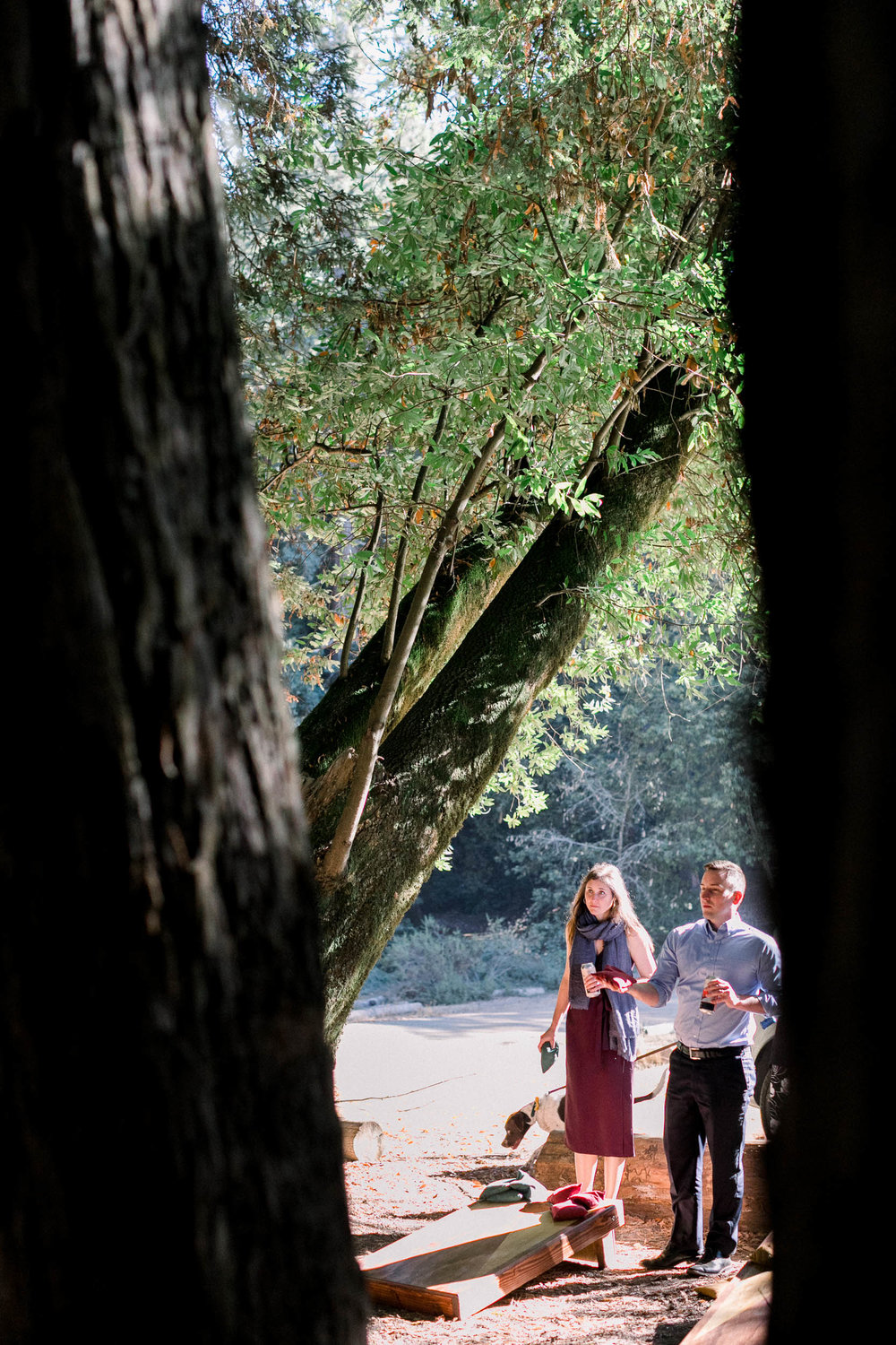 092918_J+S_Mt Madonna Redwoods Wedding_Buena Lane Photography_071.jpg