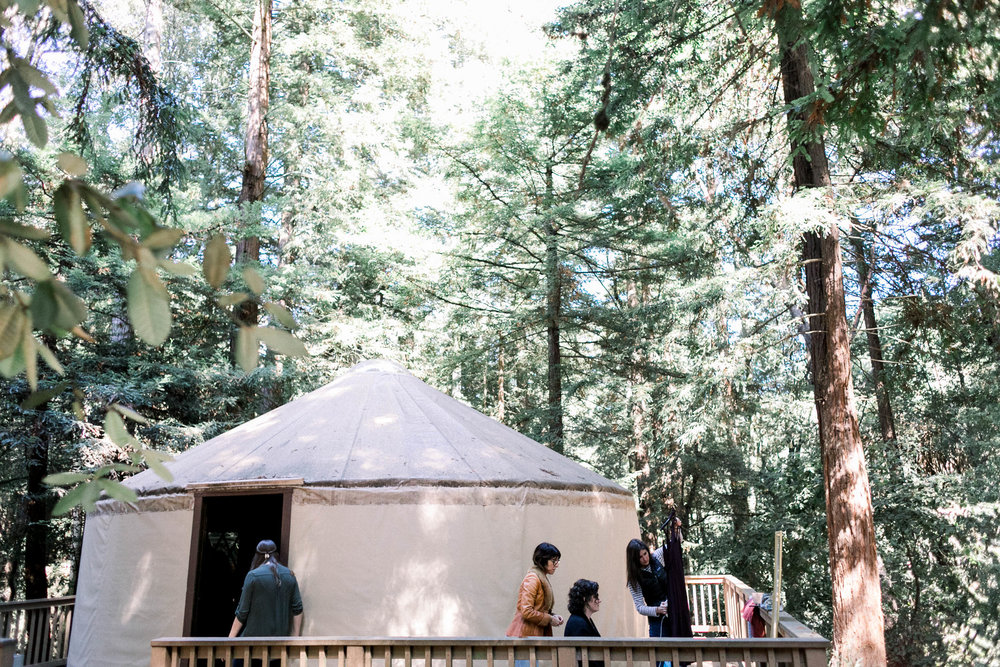 Mt Madonna Redwoods Wedding_Buena Lane Photography__79A8752.jpg
