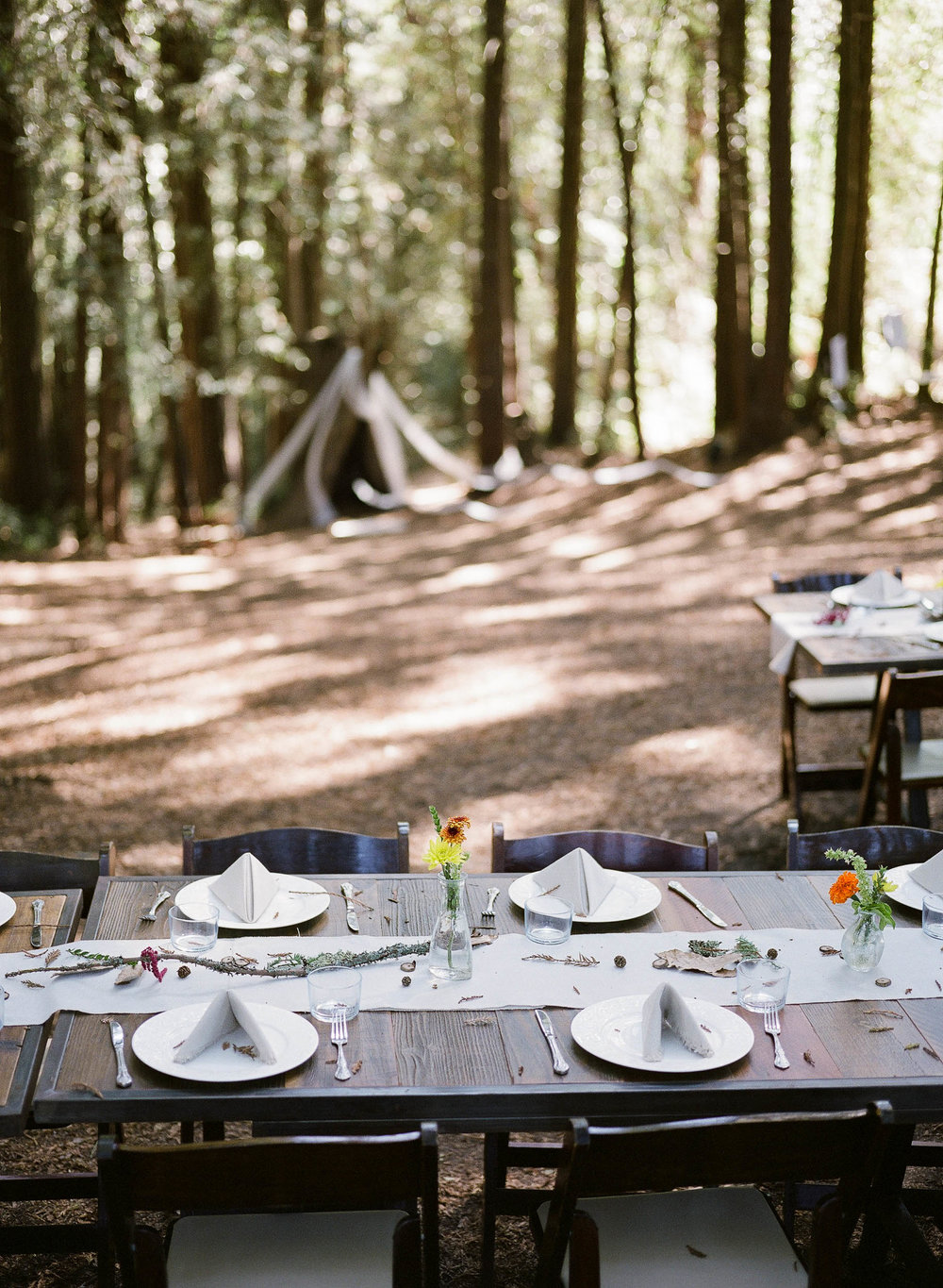 00009344_Redwoods Wedding_Film_Buena Lane Photography_002.jpg