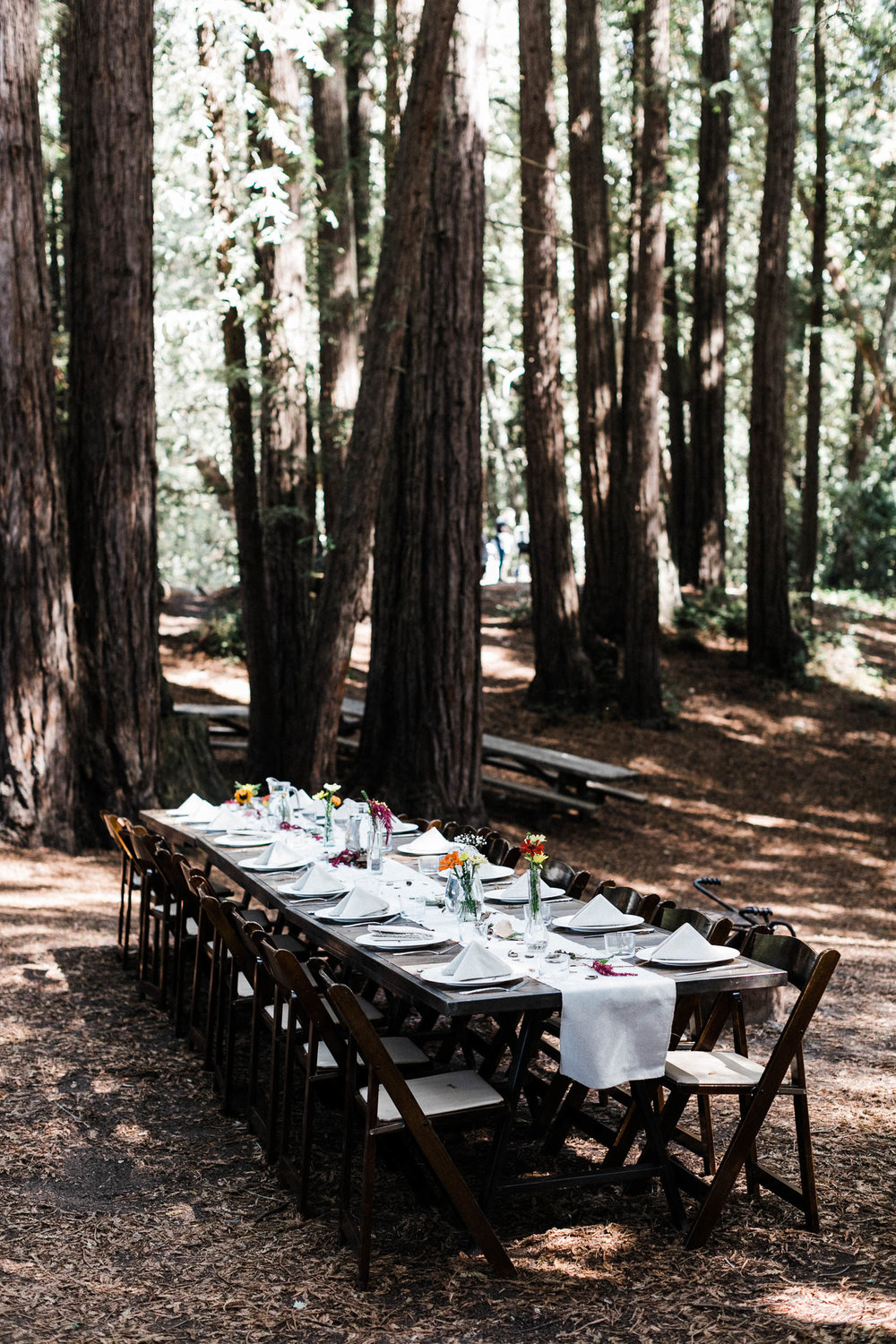 092918_J+S_Mt Madonna Redwoods Wedding_Buena Lane Photography_019.jpg