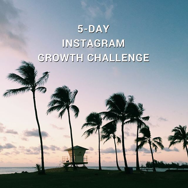 Did you know Instagram now has 800 million users and 500 million daily active users?! . That's A LOT of potential clients, business partners, and brands you could be working with! . @elisedarma is running a 5-day Instagram growth challenge starting Monday 23 October. . You'll get daily tips to double the amount of followers you normally get in a week, free Instagram training, and daily live chats with Elise in her Facebook group, plus some surprise goodies 🙈 . I did this challenge back in April and I learnt SO much, landed a new client through Insta, and started attracting my dream audience who also loves all things travel, business, and minimalism ie. you guys! ☺️ . Click the link in bio to sign-up! . P.s. I wouldn't promote anything that I don't 100% believe in, and Elise's courses and coaching have been essential to getting my business growing this year so I'm sure you'll learn a thing or two (or ten 😋) from her as well.