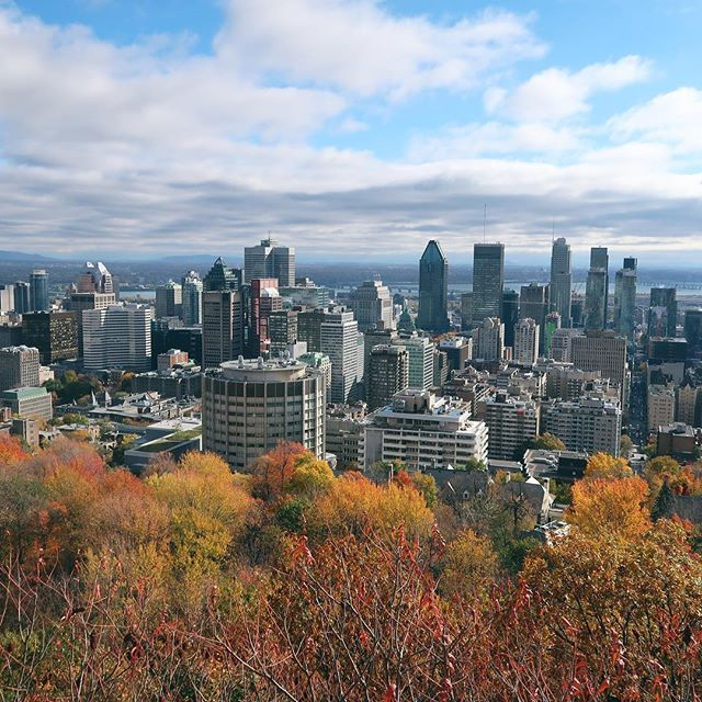Montreal in autumn last year was beautiful! Here's a few must-do things if you ever find yourself in this beautiful city ☺️ . 🍂Walk up Mount Royal and enjoy the views of the city (as pictured above). 🌱Try the vegetarian and vegan whole foods @lovrestaurant. 🛏Stay at Hotel Le Dauphin - the perfect location between downtown and Old Montreal. 🍴Grab some fresh bagels from @fairmountbagel 🚶🏼‍♀️Walk around Old Montreal. . Have you been to Montreal before? What are your favourite things to do on a short city break?