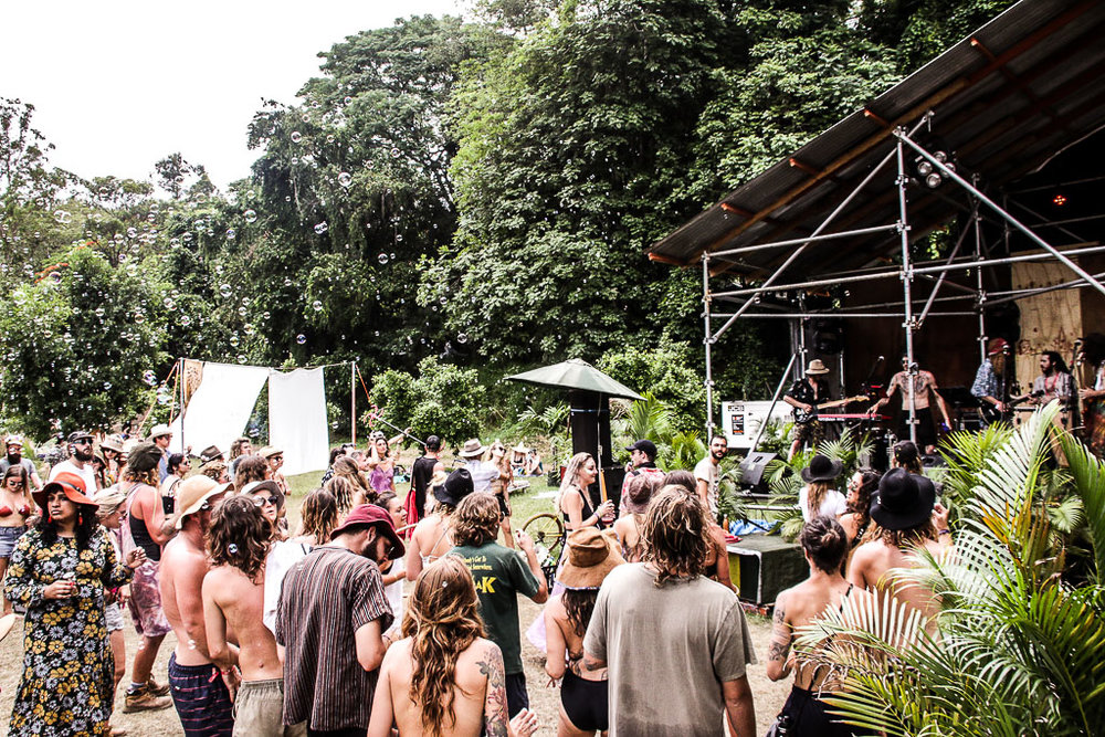 live-review-jungle-love-festival-sunshine-coast-music-the-salty-dreamers-3.jpg