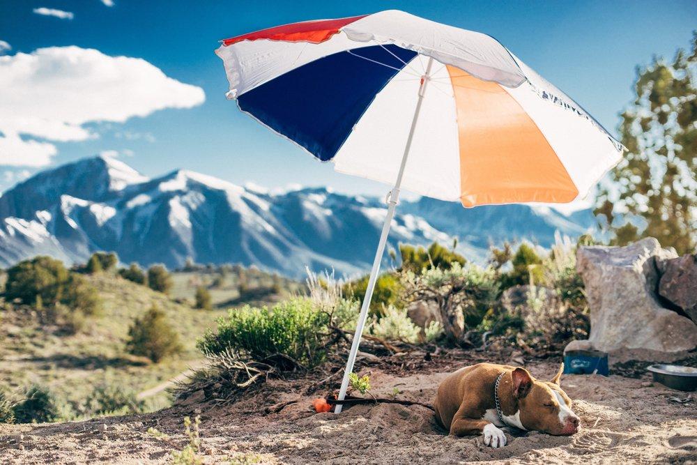 travel-tips-chronic-fatigue