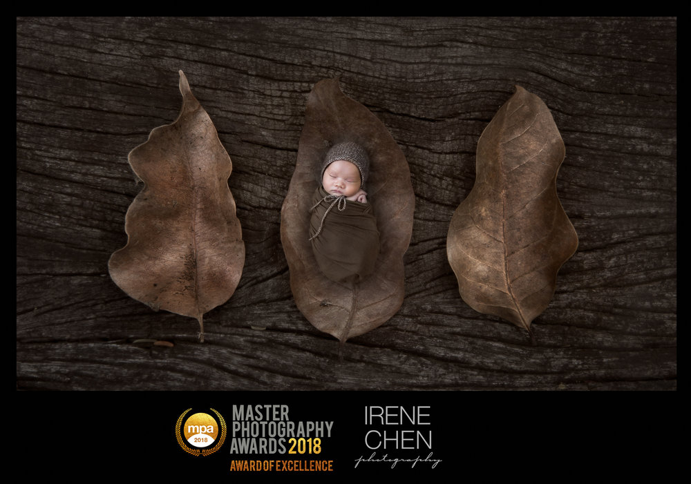 Image that won Newborn MPA Award of Excellence 2018
