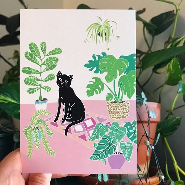 🌿🐱 Meow! My little Jungle Kitty drawing is now available as a greeting card! 🙃🌿 There's a little link in my bio 💌 . . . . #junglekitty#indoorplants#greetingcards#illustration#catsofinstagram#catcard#kitty#cat#jungle#monstera#fiddleleaffig#hangingplants#heydaisydesign#pinkandgreen