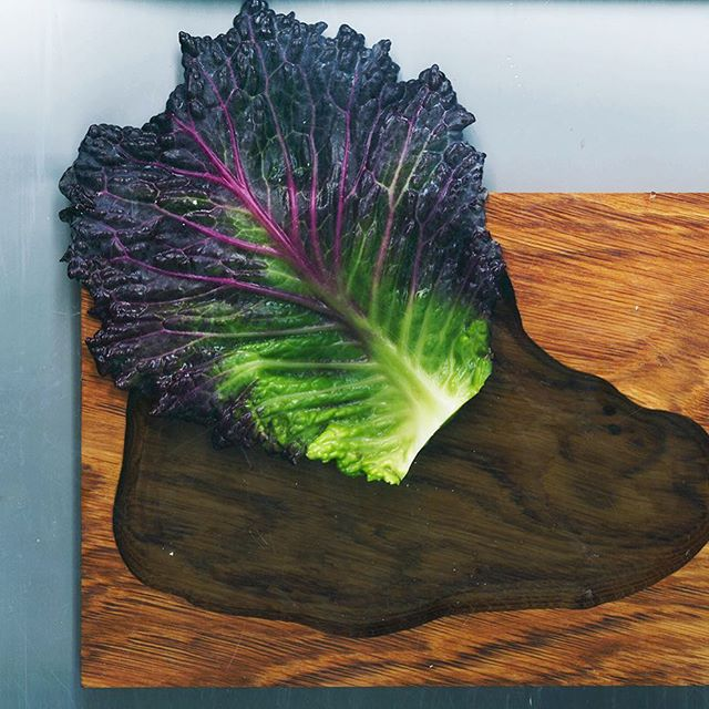 CHOUX DE PONTOISE & LAC DE CHÊNE D'IVRY - @mateo_garcia_escabo is in the #wood Amazing #vegetables from Alexandre Demaret for @belafonte.paris #designforfood @paris.foodguide @lefooding #green #food #ruedeciteaux #paris12 #restaurant