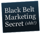 black-belt-secret-bug