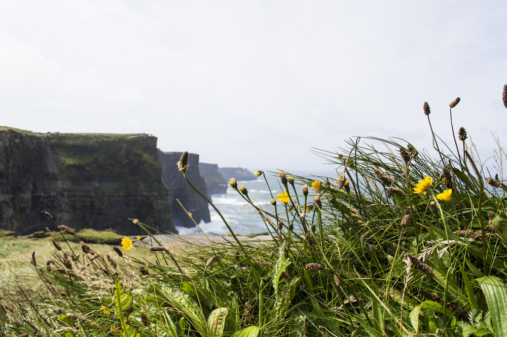 Cliffs_001.jpg