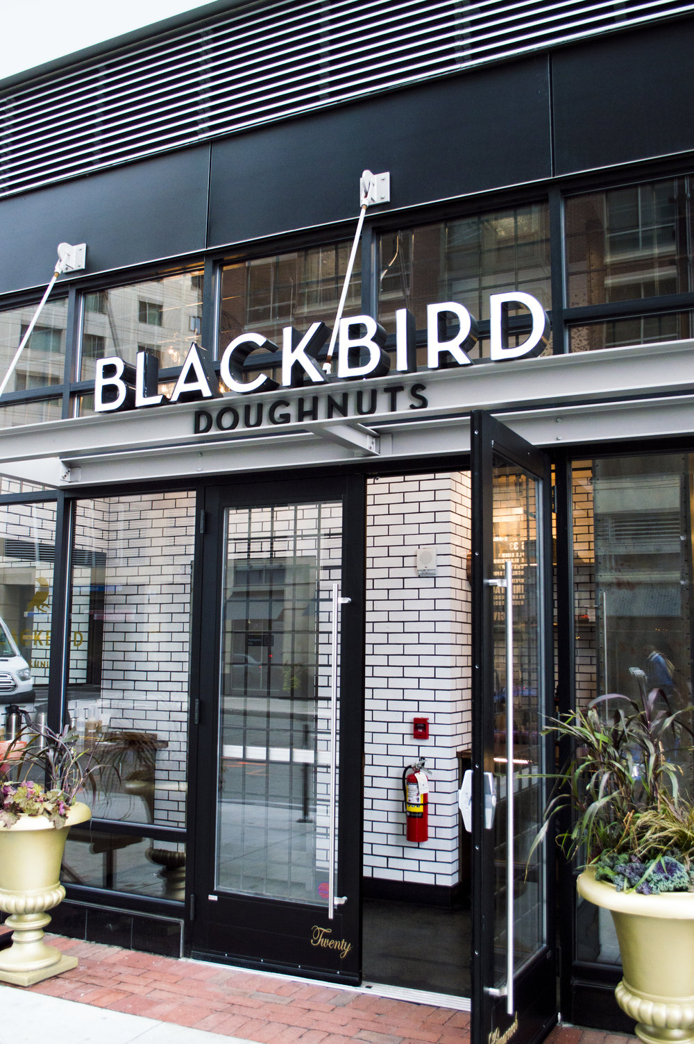 we started off our day with blackbird doughnuts! we've had union square but this was our first time trying blackbird, and the new little stand by fenway is so cute!